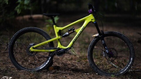 Zerode Taniwha Bike Check Review